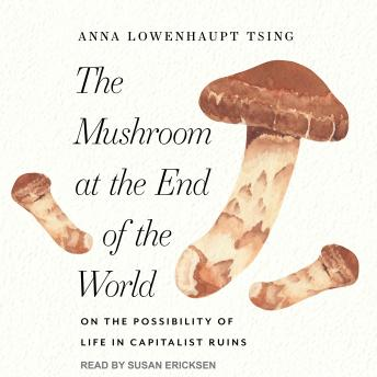 Mushroom at the End of the World: On the Possibility of Life in Capitalist Ruins, Anna Lowenhaupt Tsing