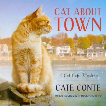 Cat About Town, Cate Conte