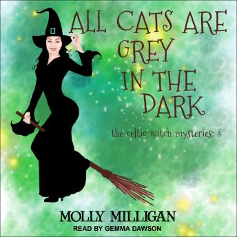 All Cats Are Grey In The Dark, Audio book by Molly Milligan