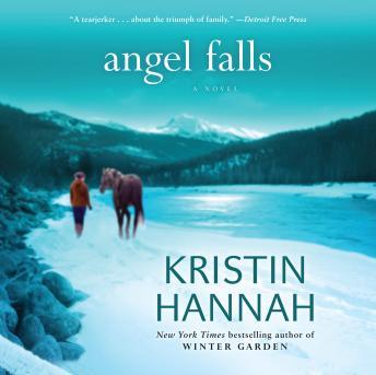 Angel Falls details
