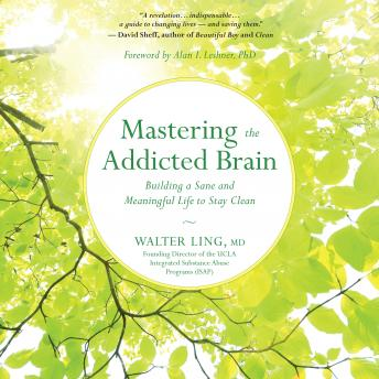 Mastering the Addicted Brain: Building a Sane and Meaningful Life to Stay Clean, MD Walter Ling