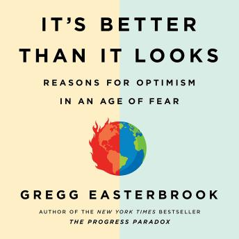 It's Better Than It Looks: Reasons for Optimism in an Age of Fear