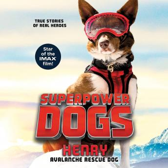 Superpower Dogs: Henry: Avalanche Rescue Dog, Cosmic
