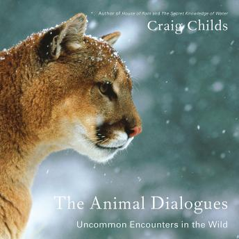 Download Animal Dialogues: Uncommon Encounters in the Wild by Craig Childs