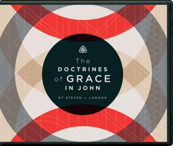 Download Doctrines of Grace in John by Steven J. Lawson