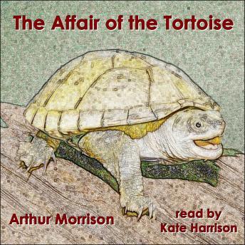 The Affair of the Tortoise