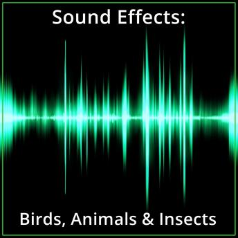 Sound Effects: Birds, Animals & Insects