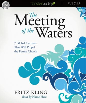 Meeting of the Waters: 7 Global Currents That Will Propel the Future Church, Fritz Kling
