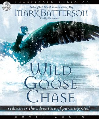 Wild Goose Chase: Rediscover the Adventure of Pursuing God