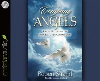 In the Company of Angels: True Stories of Angelic Encoungers, Robert Strand