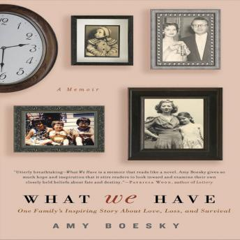 What We Have: A Memoir, Amy Boesky