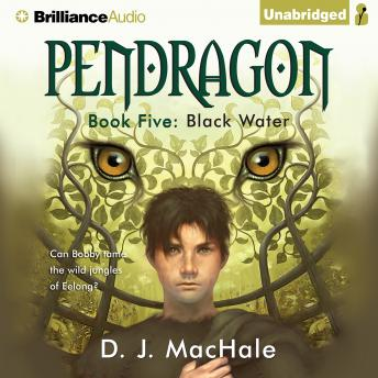 Download Black Water by D.J. MacHale