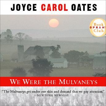 We Were the Mulvaneys details