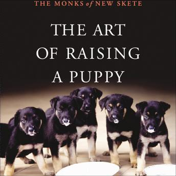 Download Art of Raising a Puppy by The Monks Of New Skete