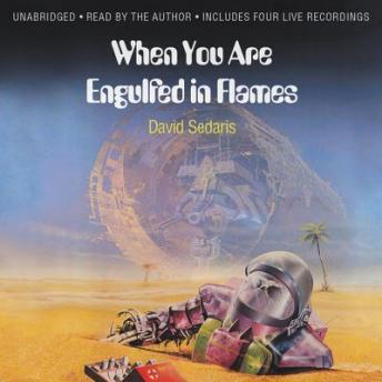 Download When You Are Engulfed in Flames by David Sedaris