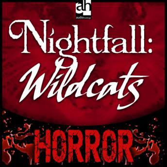 Nightfall: Wildcats, Christian Noak