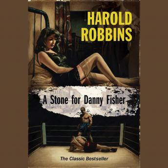 Stone for Danny Fisher, Harold Robbins
