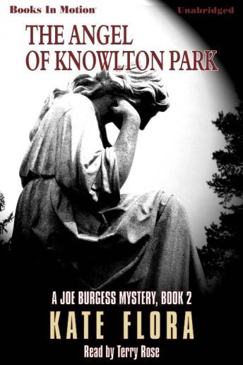 Angel Of Knowlton Park, Kate Flora