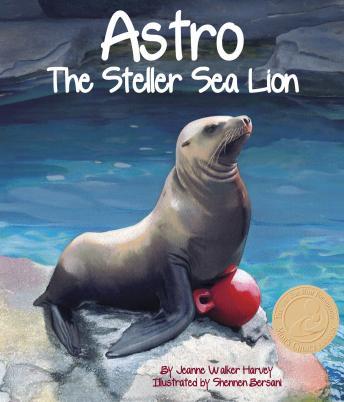 Astro: The Steller Sea Lion