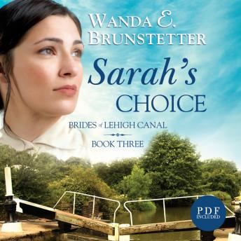 Sarah's Choice, Wanda E. Brunstetter