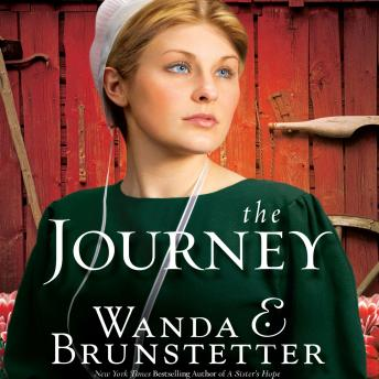 Download Journey by Wanda E Brunstetter