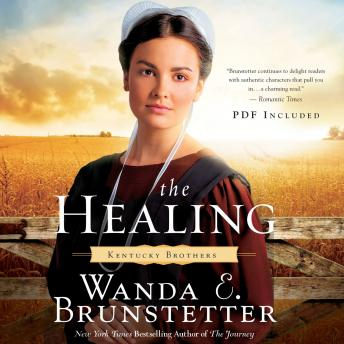 Download Healing by Wanda E Brunstetter