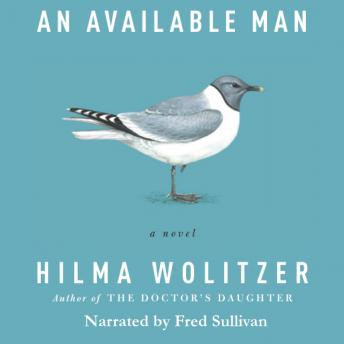 Available Man: A Novel, Hilma Wolitzer