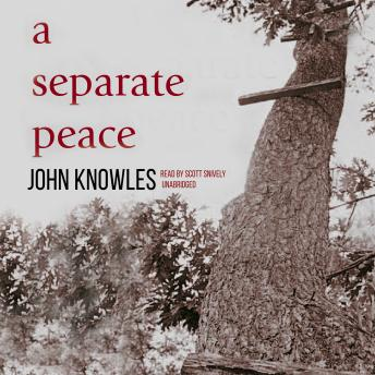 Separate Peace, John Knowles
