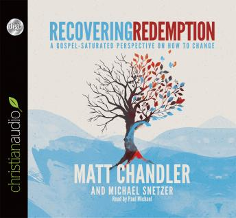 Recovering Redemption: A Gospel Saturated Perspective on How to Change, Michael Snetzer, Matt Chandler