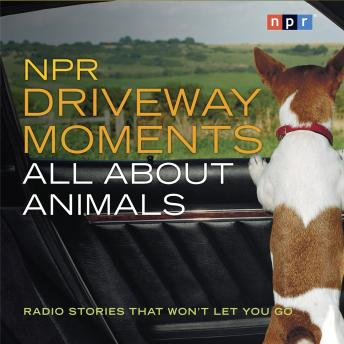 NPR Driveway Moments All About Animals: Radio Stories That Won't Let You Go, NPR