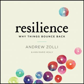 Resilience: Why Things Bounce Back, Anne Marie Healy, Andrew Zolli