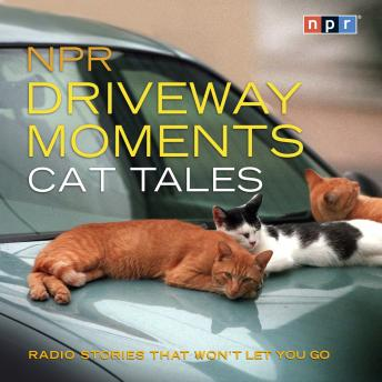 NPR Driveway Moments Cat Tales: Radio Stories That Won't Let You Go, NPR