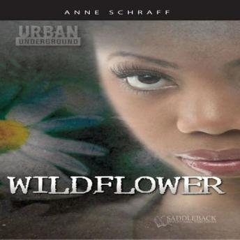 Wildflower, Anne Schraff
