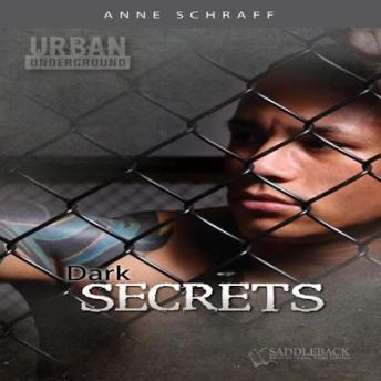 Download Dark Secrets by Anne Schraff