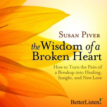 Wisdom of a Broken Heart, Susan Piver