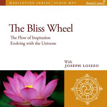 Bliss Wheel: Sublimation and Natural Healing Guided Mediations from the Nalanda Institute, Joe Loizzo