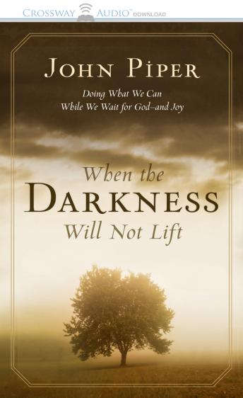 When the Darkness Will Not Lift: Doing What We Can While We Wait for God--and Joy, John Piper