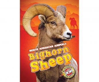 Bighorn Sheep: Blastoff! Readers: Level 3