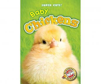 Baby Chickens: Blastoff! Readers: Level 1