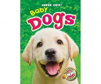 Baby Dogs: Blastoff! Readers: Level 1