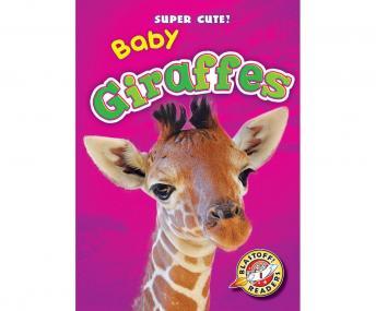 Baby Giraffes: Blastoff! Readers: Level 1