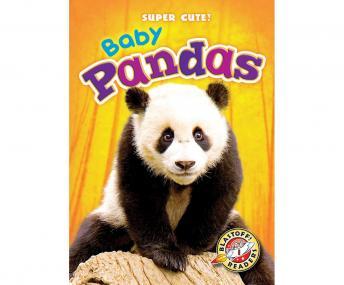 Baby Pandas: Blastoff! Readers: Level 1