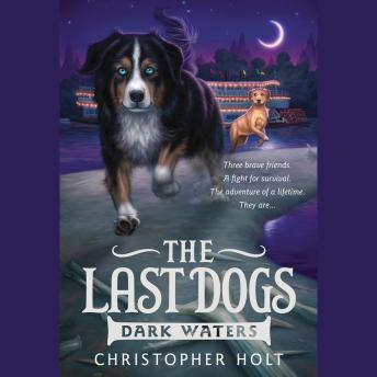 Last Dogs: Dark Waters, Christopher Holt