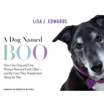 Dog Named Boo: How One Dog and One Woman Rescued Each Other--and the Lives They Transformed Along the Way, Lisa Edwards