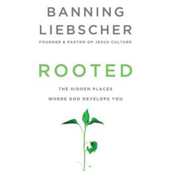 Rooted: The Hidden Places Where God Develops You, Banning Liebscher