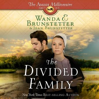 Divided Family, Wanda E Brunstetter, Jean Brunstetter