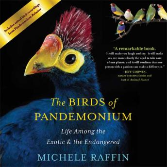 Birds of Pandemonium: Life Among the Exotic and the Endangered, Michele Raffin