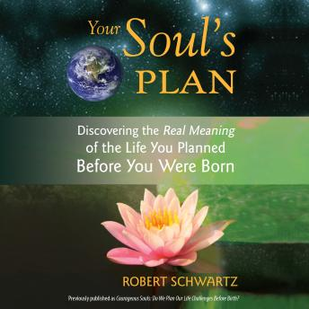 Your Soul's Plan: Discovering the Real Meaning of the Life You Planned Before You Were Born, Robert Schwartz