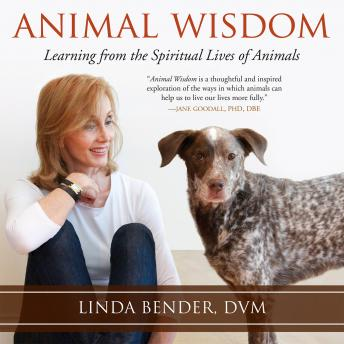 Download Animal Wisdom: Learning from the Spiritual Lives of Animals by Linda Bender
