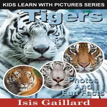 Tigers: Photos and Fun Facts for Kids